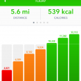 Stepz Pedometer Step Counter